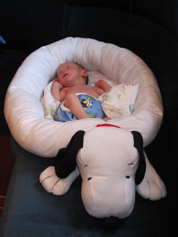 BATHING AN INFANT AFTER A CIRCUMCISION | BATH FANS